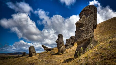 In Easter Island DNA, Evidence of Genetic Loneliness - The