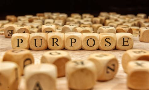 The rise of the purpose-driven business | GreenBiz