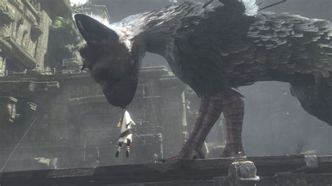 Wallpaper The Last Guardian, Trico, Best Games 2016, Games