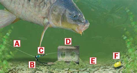 How to tie a resistance-free running feeder or leger rig