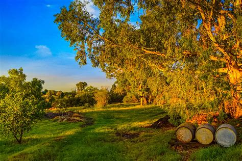 Best Things to Do in Bloemfontein, South Africa